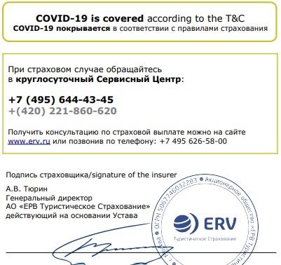 коронавирус в полисе ERV